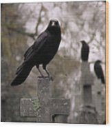Cemetery Crows Wood Print