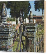 Cemetery Gate With Peeling Paint Wood Print