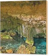 Cenote Two Wood Print
