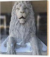 Center Street Lion Wood Print