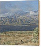 Central Arizona Landscape Wood Print