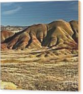 Central Oregon Painted Hills Wood Print