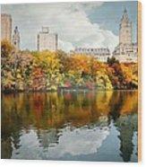 Central Park #1 Wood Print