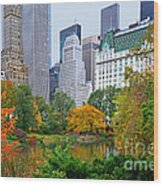 Central Park And Fifth Autumn View Wood Print