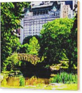 Central Park At 59th Street Wood Print