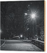 Central Park At Night Wood Print