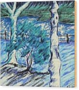 Central Park Blues Wood Print