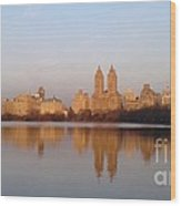 Central Park Daybreak Wood Print