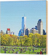 Central Park Panoramic View Wood Print