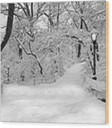 Central Park Dressed Up In White Wood Print
