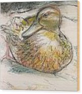 Central Park Duck On The Rocks Wood Print