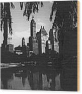 Central Park Evening View Wood Print