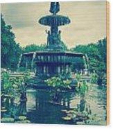 Central Park Fountain Wood Print