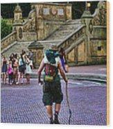 Central Park Hiker Wood Print