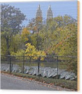 Central Park In Autumn 2 Wood Print