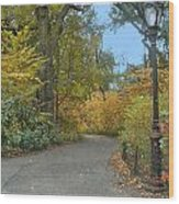 Central Park In Autumn 7 Wood Print