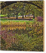 Central Park In Autumn - Nyc Wood Print
