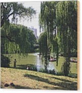 Central Park In The Summer Wood Print