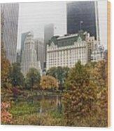 Central Park Wood Print