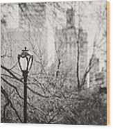 Central Park Lamppost In New York City Wood Print