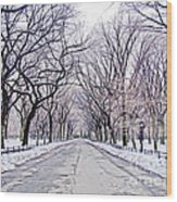 Central Park Mall In Winter Wood Print