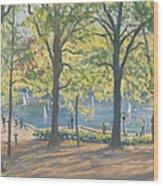 Central Park New York Wood Print