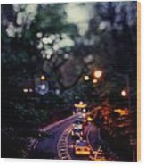 Central Park Nights Wood Print