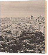 Central Park Pano Sepia Wood Print