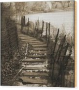 Central Park Path Wood Print