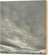Central Park Reservior Wood Print