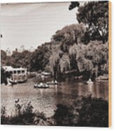 Central Park Rowing - New York City Wood Print