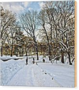 Central Park Snow Storm One Day Later2 Wood Print