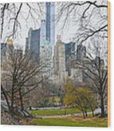 Central Park South Buildings From Central Park Wood Print