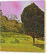 Central Park Sunday Wood Print