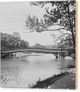Central Park The Lake Wood Print