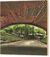 Central Park Underpass Wood Print