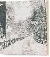 Central Park Winter Landscape Wood Print