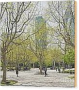 Central Shanghai Park In China Wood Print