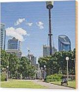 Central Sydney Park In Australia Wood Print
