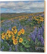 Central Washington Spring Wood Print