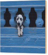 Centro Habana Wood Print