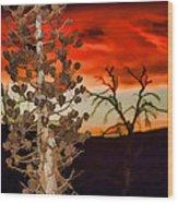 Century Soldier Sunset Wood Print