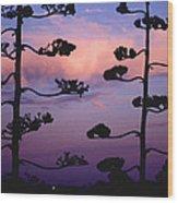 Century Sunset Wood Print