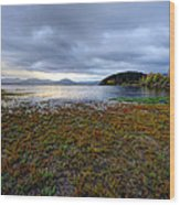 Cerknica Lake Wood Print
