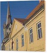 Cesis Latvia Wood Print