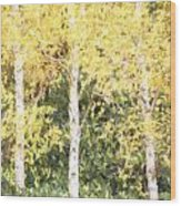 Cezanne Style Digital Painting Beautiful Autumn Color In Forest Wood Print