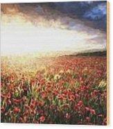 Cezanne Style Digital Painting Stunning Poppy Field Landscape Under Summer Sunset Sky Wood Print