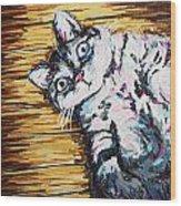 Chachi Cat Portrait Wood Print
