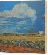 Chaco Storm Wood Print