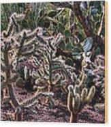 Chainfruit Cholla Wood Print